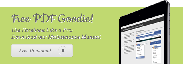 goodie-maintenance-manual