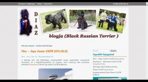 Diaz blogja   Black Russian Terrier